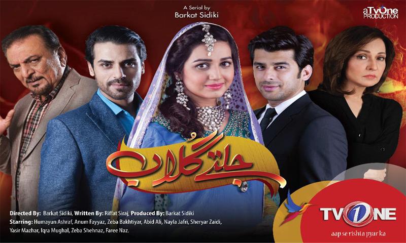 New drama on TV one 'Jaltay Gulab' has a stellar cast