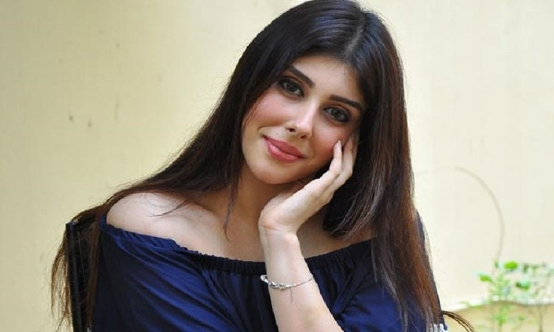 Indian Actress Aditi Singh Will Do An Item Number in Pakistani Film 'Cha Jaa Re'
