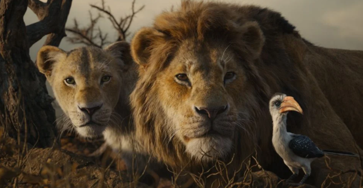 Lion King's Live Action Sequel In The Works