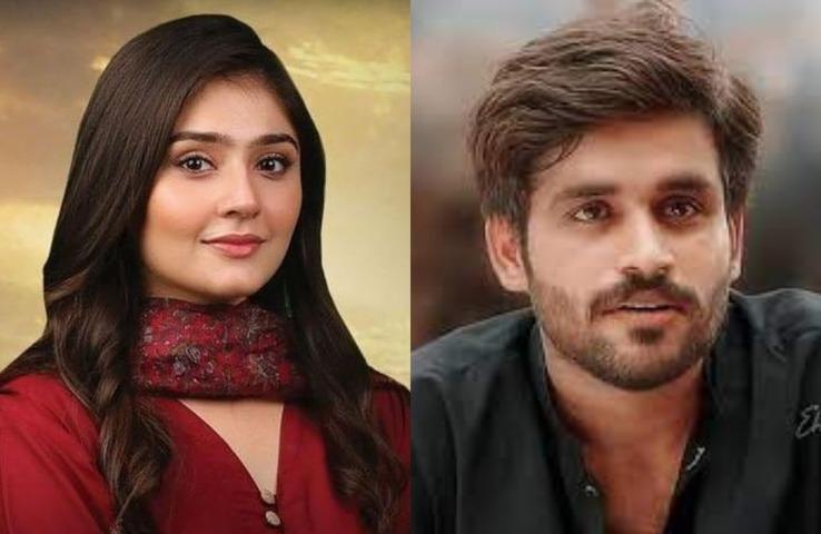 Dur-e-Fishan, Adnan Samad Khan Favorites Amongst LSA Emerging Actors