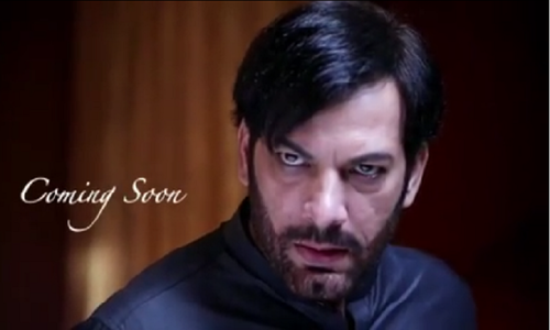 Saleem Sheikh to play an antagonist in upcoming serial 'Rani'