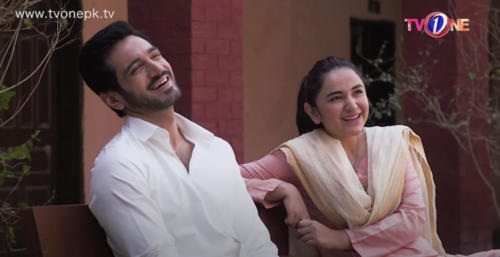 Dil Na Umeed Toh Nahi Finale: The Happily Ever After We All Wanted!