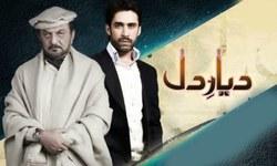 Diyar-e-Dil: Osman Khalid and Hareem Farooq steal the show