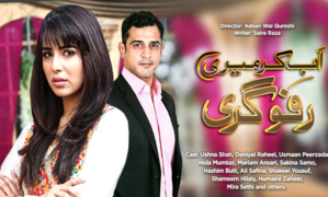 Ab Kar Meri Rafugiri: Ushna Shah steals the show every week!
