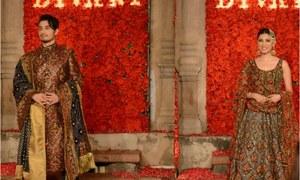 Diva'ni reveals Bagh-e-Bahaar at Yousaf Salli's haveli