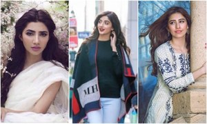 5 Pakistani celebrities that could have an alternate career