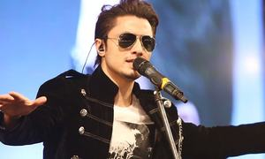 Does Ali Zafar represent Pakistan Cricket?