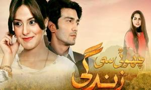 Urwa's Intentions Will Soon Bring Trouble In His Choti Si Zindagi