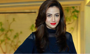 Sana Javed speaks to HIP about 'Mehrunisa V Lub U' and turning back to television