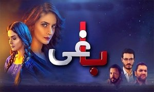 Baaghi episode 18 review: Sheheryar is a welcome addition to Baaghi!