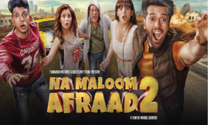 Na Maloom Afraad 2 to release in USA on the 17th of December!