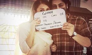 Nausheen Shah and Kamran Jeelani to star in Guddi