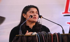 Sharmeen Obaid Chinoy Curates The National History Museum In Lahore