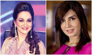 Here's what Bushra Ansari thinks about Mahnoor Baloch