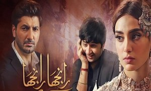 Ranjha Ranjha Kardi Episode 17 In Review : The Story Introduces A New Twist