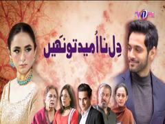 Dil Na Umeed Toh Nahi: A Mysterious Twist Leaves Viewers Speechless!