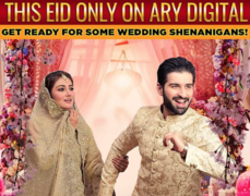 The Ultimate Guide to Your 'Bari' Eid TV Binge!